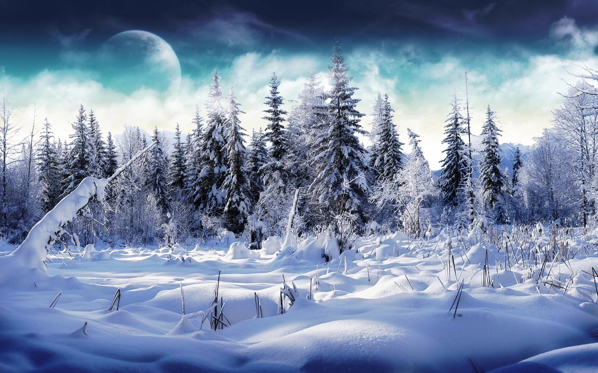 Настоящую русскую морозную зиму и