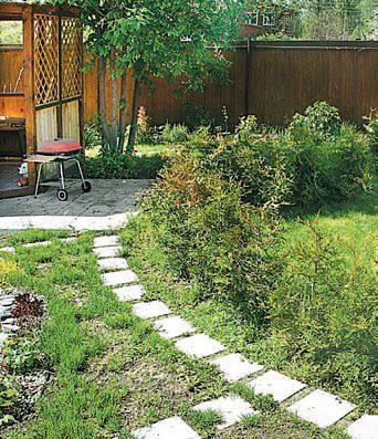 Чтобы сформировать живую изгородь, вдоль дорожек высадили тую