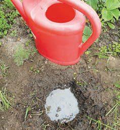 Чтобы удобрение быстрее растворилось, добавляют воду