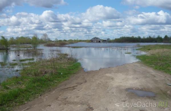 Подтопление дачных участков Окой: дачный участок затопило