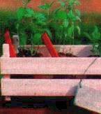 malenkie-hitrosti-ogorodnikov