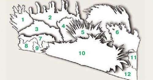 Общая схема миксбордера