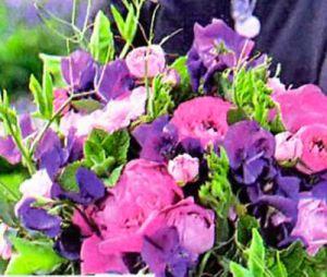 pion-sopernik-rozy
