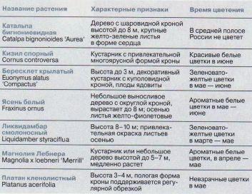samye-krasivye-rasteniya-v-sadu