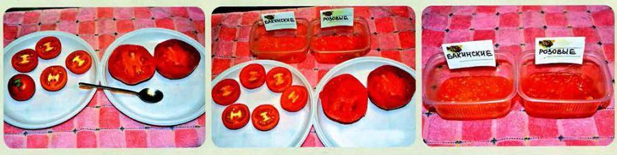 sobiraem-semena-tomatov