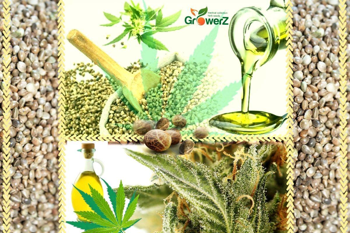 Конопляное семя в народной медицине какие эффекты после курения конопли