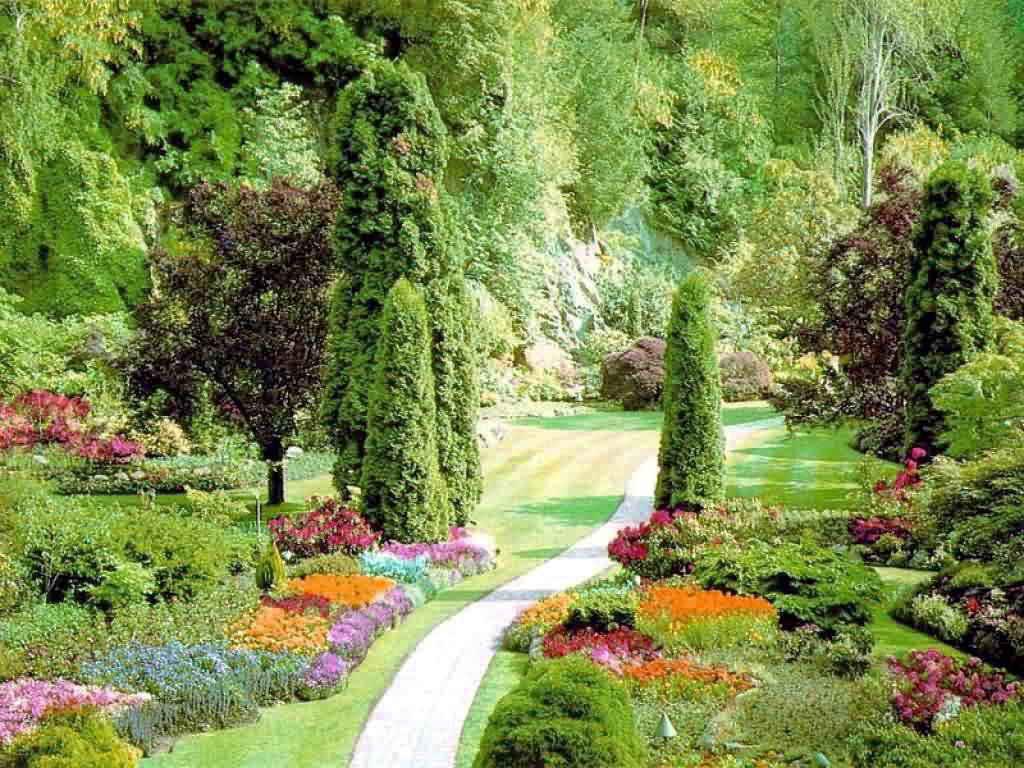 Сад огород цветы ремонт в рассрочку