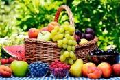 7 способов повысить урожай в теплице